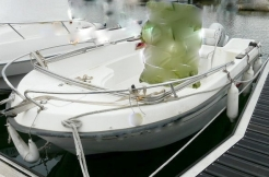 Vente-bateau-moteur-saint-cyprien