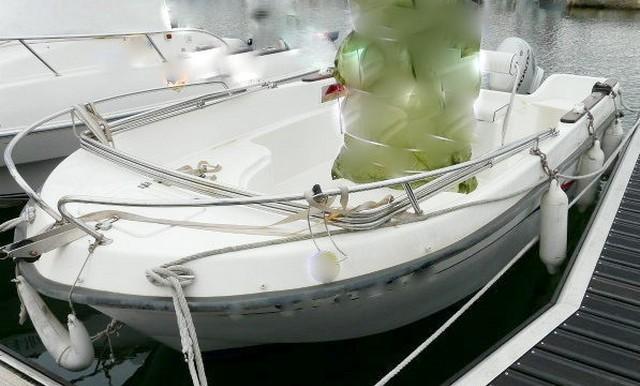 Vente-bateau-moteur-saint-cyprien-1