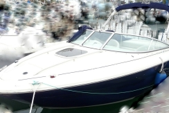vente sea ray 220 sun sport d'occasion