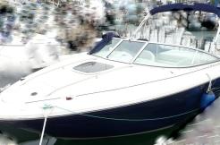 vente sea ray 220 sun sport d'occasion