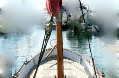 Trapani occasion meridionale 550 à saint-cyprien