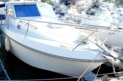 achat vente antares 800 sur st-cyprien