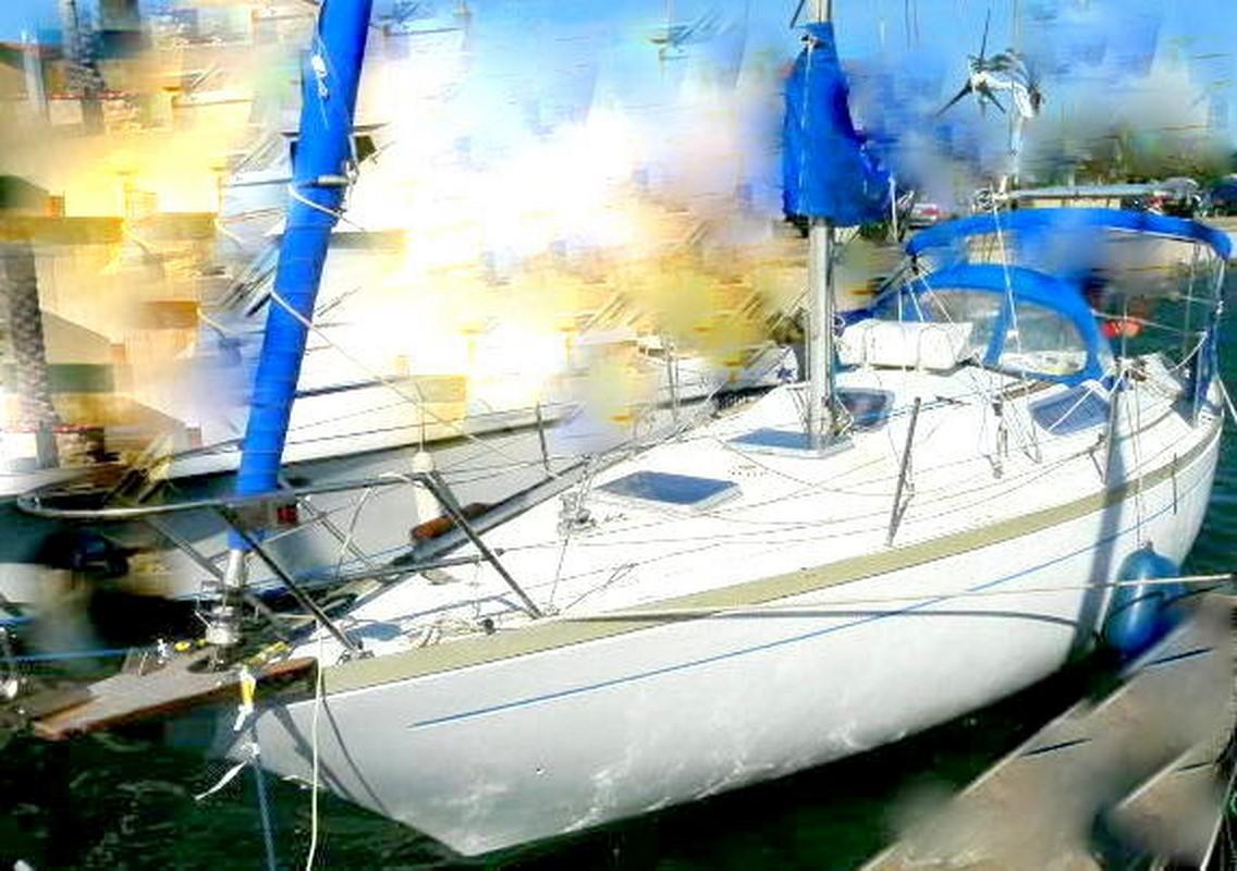 ALOA 29  (Aloa marine )